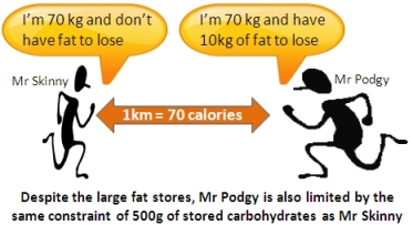 Limited stores of Carbohydrates are your premium fuel that are also required in parallel when burning fat!